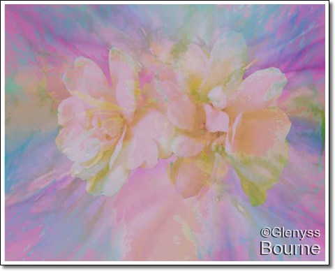 Banksia Rose Abstract painting